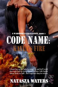 CodeName_KylasFire_LRG